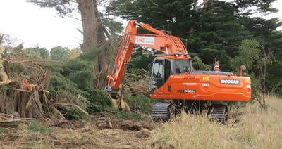 A Simple DIY Guide to Land Clearing